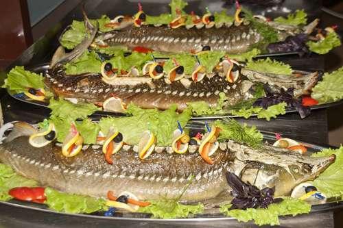 время брак рыба с рыбой фильме: Название: